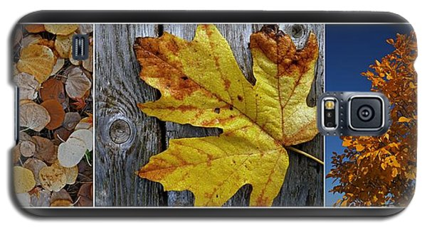 Fall Colors Triptych Galaxy S5 Case