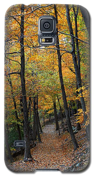 Fall Foliage Colors 03 Galaxy S5 Case