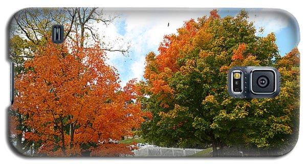 Fall Foliage Colors 09 Galaxy S5 Case