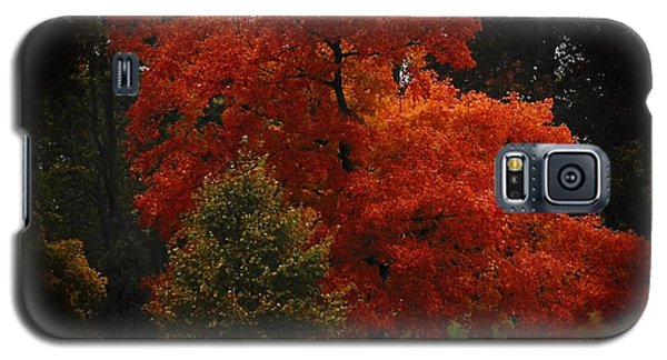 Galaxy S5 Case featuring the digital art Fall Glory by Lena Wilhite
