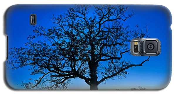 Fall Great Oak At Dawn Galaxy S5 Case