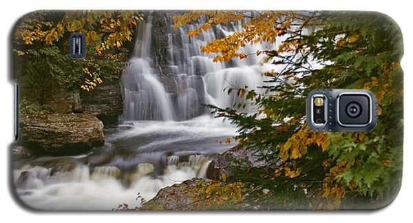 Fall In Fall - Chute Au Rats Galaxy S5 Case
