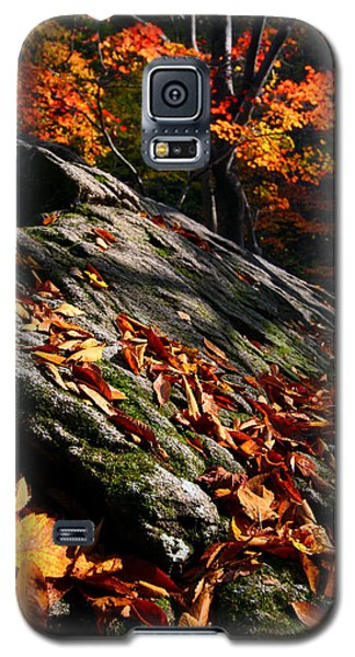 Fall In Gyeryongsan Galaxy S5 Case