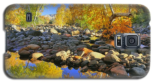 Galaxy S5 Case featuring the photograph Fall In Oak Creek  by Dan Myers