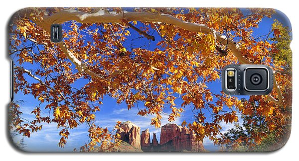 Galaxy S5 Case featuring the photograph Fall In Sedona by Dan Myers