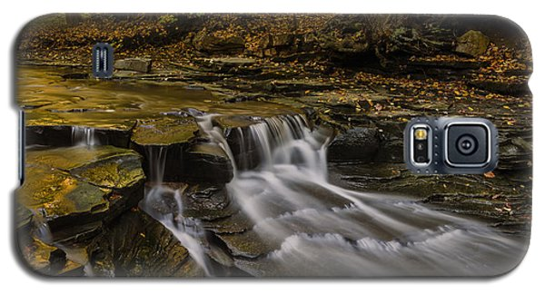 Fall In The Metroparks Galaxy S5 Case