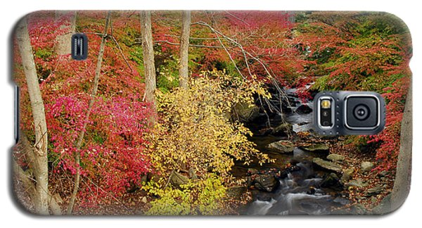 Galaxy S5 Case featuring the photograph Fall In Western Connecticut by Dan Myers