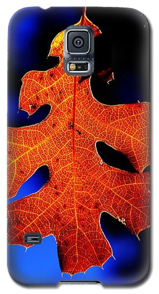 Fall Leaf Closeup Galaxy S5 Case