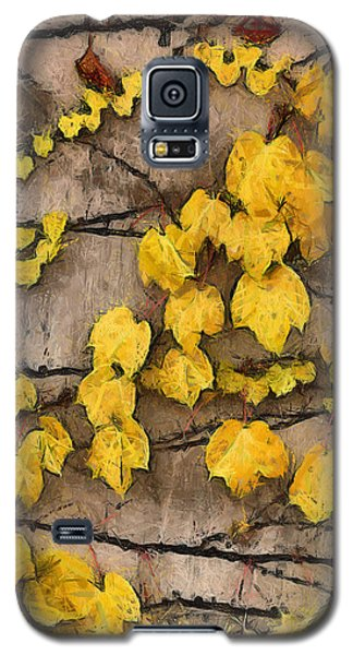 Galaxy S5 Case featuring the photograph Fall Leaves II by Brian Davis