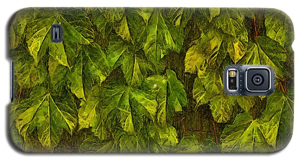 Galaxy S5 Case featuring the photograph Fall Leaves IIi by Brian Davis