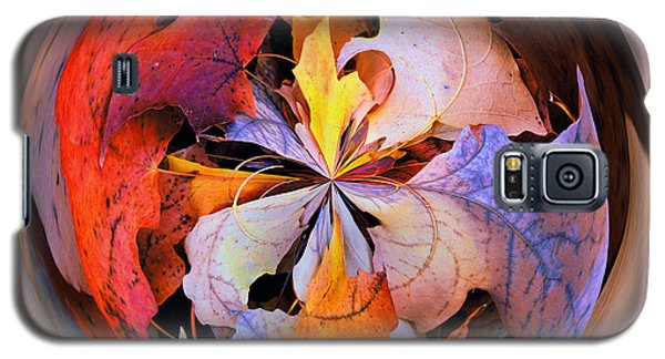 Fall Leaves Orb Galaxy S5 Case