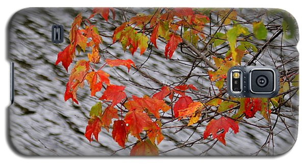 Galaxy S5 Case featuring the photograph Fall Leaves Over The Lake by Lois Lepisto