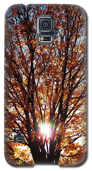 Fall Light Galaxy S5 Case