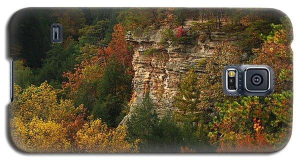Fall Light Galaxy S5 Case
