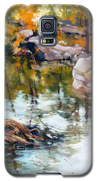 Fall Mirror Galaxy S5 Case by Rae Andrews