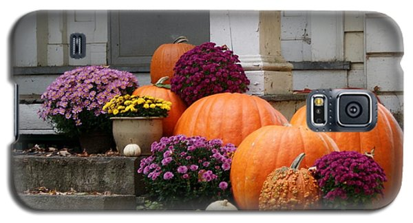 Galaxy S5 Case featuring the photograph Fall Mums And Pumpkins by Lois Lepisto