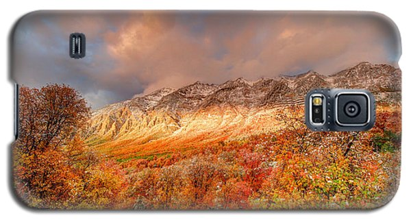 Fall On Display Galaxy S5 Case
