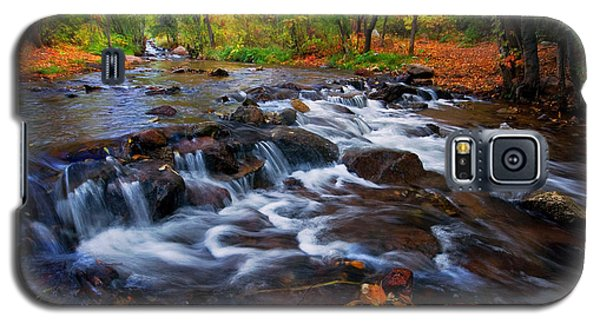 Galaxy S5 Case featuring the photograph Fall On Fountain Creek by Ronda Kimbrow