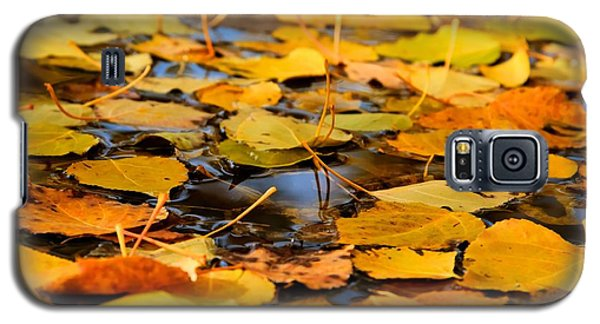 Fall On The Water  Galaxy S5 Case by Kevin Bone
