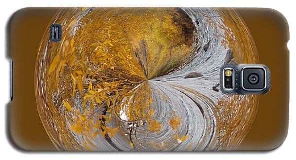 Fall Orb Galaxy S5 Case