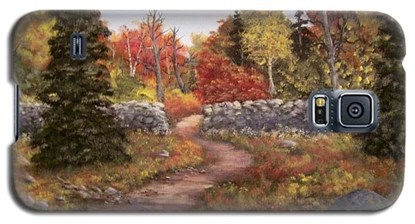 Galaxy S5 Case featuring the painting Fall Path by Megan Walsh