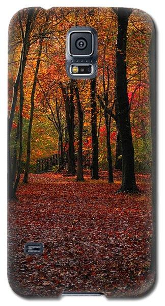 Galaxy S5 Case featuring the photograph Fall Path by Raymond Salani III