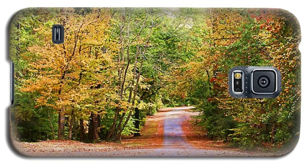 Galaxy S5 Case featuring the photograph Fall Pathway by Judy Vincent