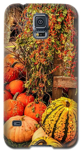 Fall Produce Galaxy S5 Case
