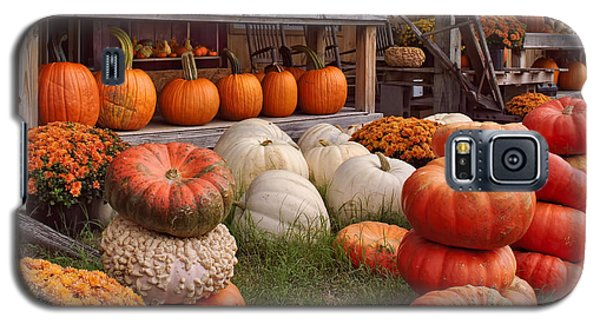 Fall Pumpkins And Gourds Galaxy S5 Case by Greg Jackson