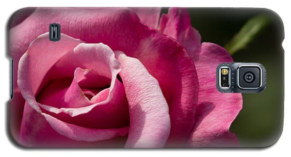 Galaxy S5 Case featuring the photograph Fall Rose by Cathy Donohoue