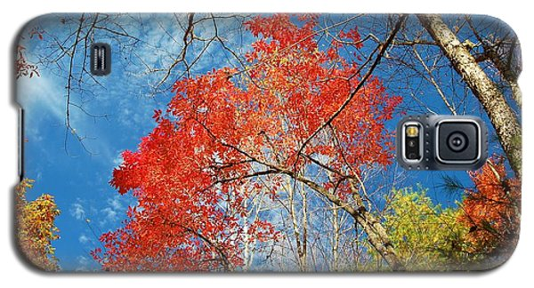Fall Sky Galaxy S5 Case