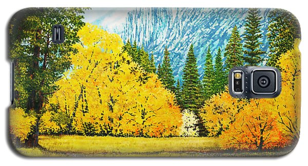 Fall Splendor In Yosemite Galaxy S5 Case