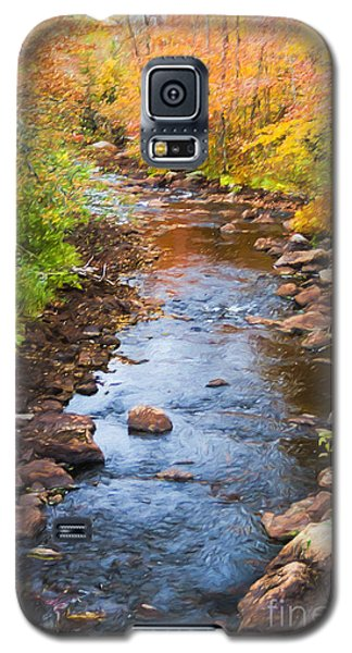 Fall Stream Galaxy S5 Case