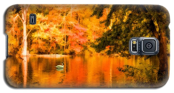 Galaxy S5 Case featuring the photograph Fall Swan by Mary Timman