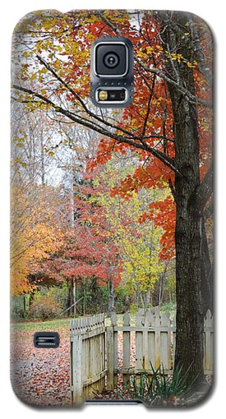 Fall Tranquility Galaxy S5 Case by Debbie Green