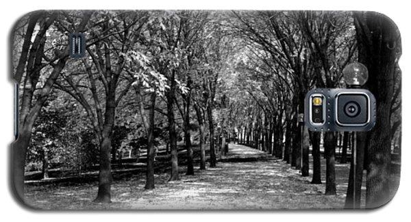 Fall Tree Promenade Landscape Galaxy S5 Case