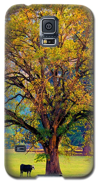 Fall Tree With Two Cows Galaxy S5 Case