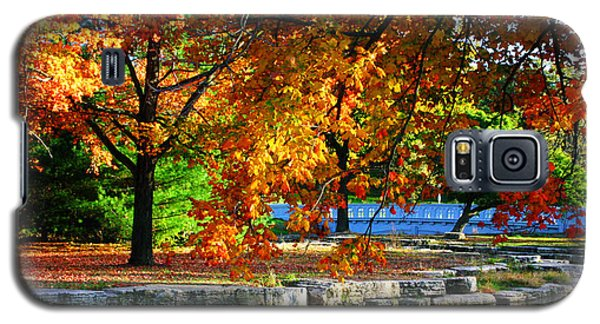 Fall Trees Landscape Stream Galaxy S5 Case