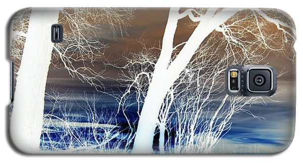 Fall Trees Galaxy S5 Case by Larry Campbell