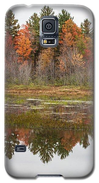Fall Trees Reflected In Lake Chocorua Galaxy S5 Case by Karen Stephenson