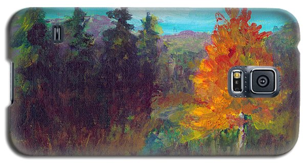 Fall View Galaxy S5 Case by C Sitton