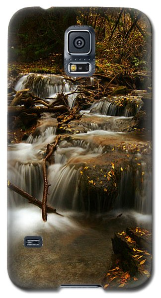 Fall With Grace Galaxy S5 Case