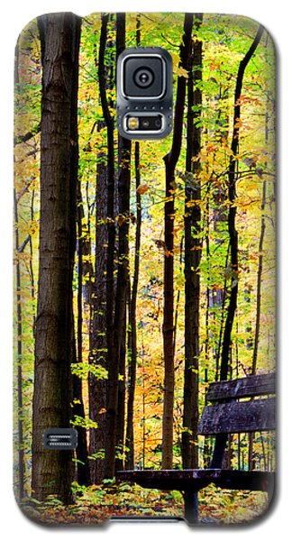 Fall Woods In Michigan Galaxy S5 Case