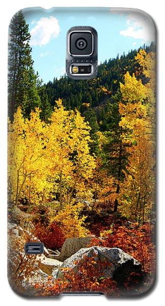 Fall2 Galaxy S5 Case