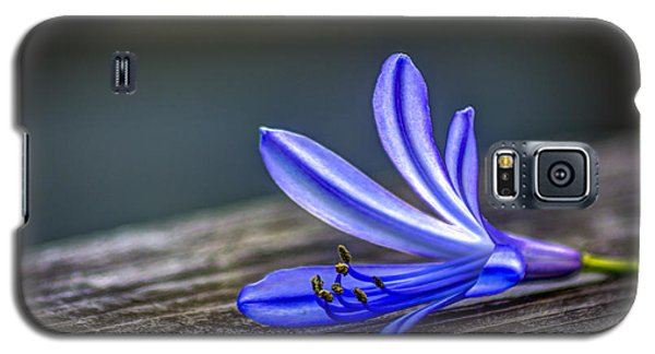 Lily Galaxy S5 Case - Fallen Beauty by Marvin Spates