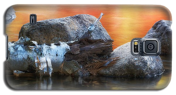 Fallen Birch Galaxy S5 Case