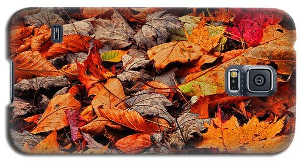 Fallen Colors Galaxy S5 Case