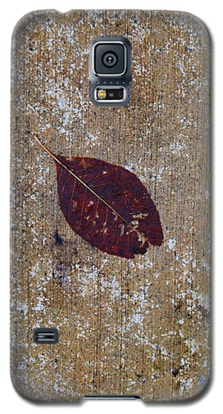 Galaxy S5 Case featuring the photograph Fallen by Jani Freimann
