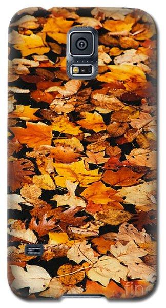 Fallen Galaxy S5 Case by Jesse Ciazza