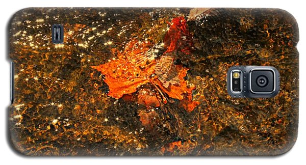 Galaxy S5 Case featuring the photograph Fallen Leaf Creek by Candice Trimble